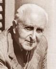 Giuseppe Novello